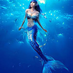 美人鱼社区在线观看免费版