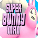 超级兔子人无敌版