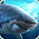 真实模拟鲨鱼捕食破解版
