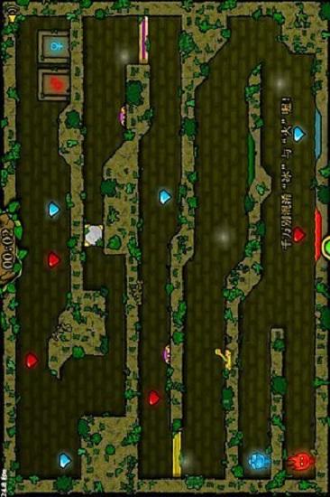 森林冰火人2双人版