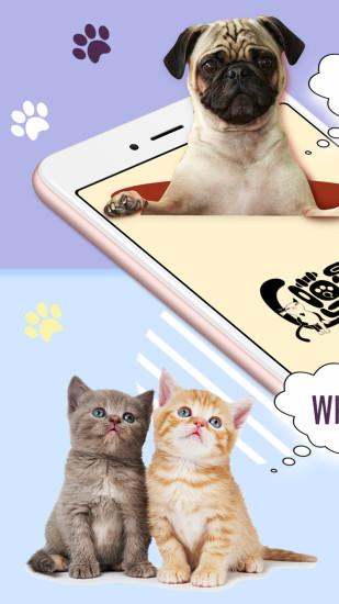 猫狗语翻译器免费版安卓