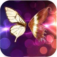 夜蝶直播APP下载安装v5.6.1